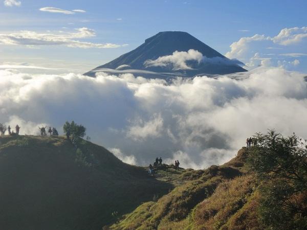 Gunung Sikunir, Dieng, Wonosobo, Jawa Tengah. (Foto: Kandi)